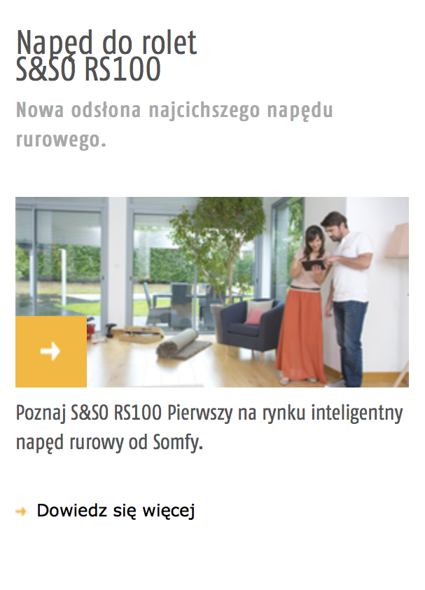 Napęd Somfy S&SO RS100
